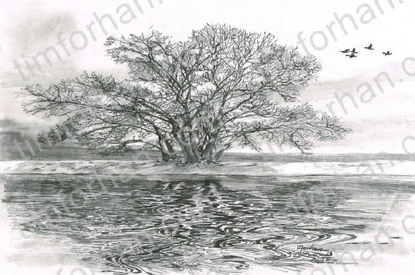 Flyover Landscape Pencil Drawing L012