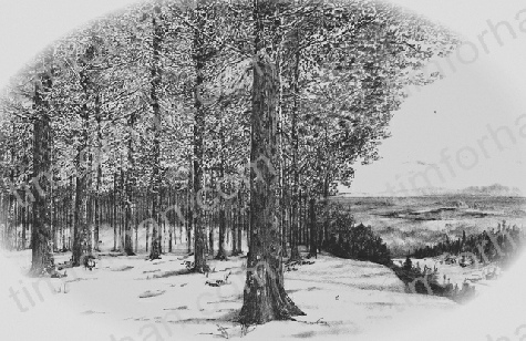 Overlook landscape pencil drawing l013